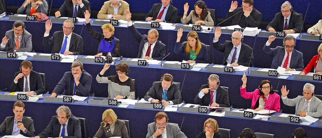 We conducted a study of candidates and political parties in the 2014 European Parliament elections from a gender perspective